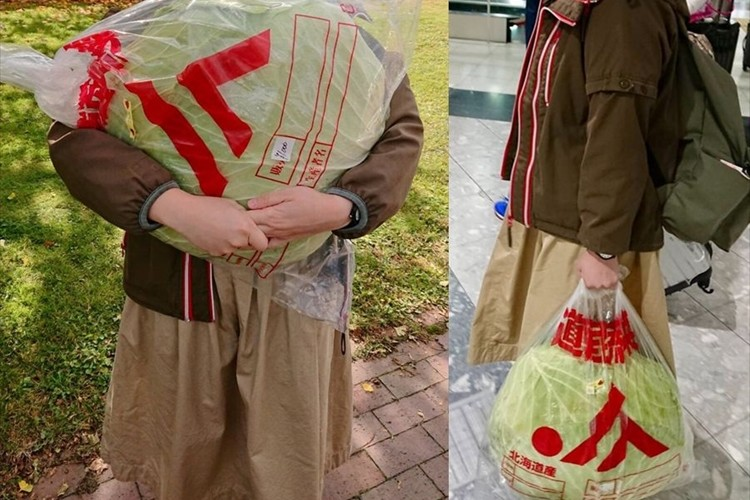 通常のキャベツの約10倍!「札幌大球」を購入し、帰京の最中に好奇の目にさらされた事案が話題に!