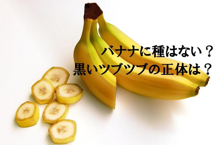バナナに種は無いってホント?実の中の黒いツブツブの正体は?種なしでどうやって繁殖する?