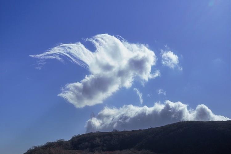 秋空に浮かぶ、天使のような雲が幻想的だと話題に「時を忘れてずっと眺めていたくなる」