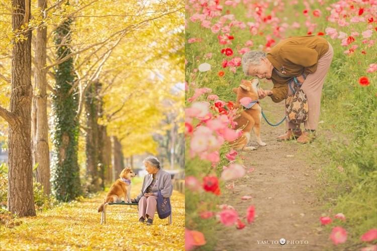 「目頭が熱くなり、心が温かくなりました」祖母と柴犬の優しさ溢れる写真に多くの反響
