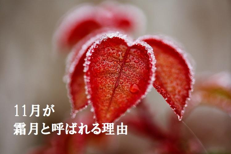 旧暦で11月を意味する「霜月」、由来には「収穫への感謝」という説も