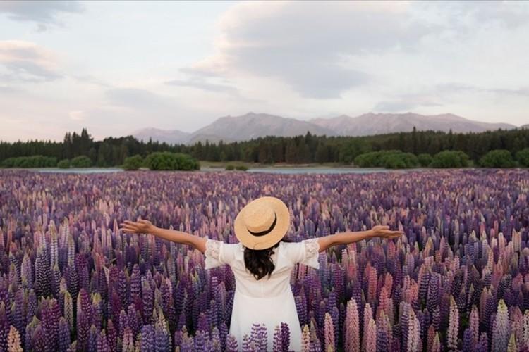 心を奪われるほどの美しさ・・湖を鮮やかに彩るルピナスのお花畑が、神秘的だと話題に!