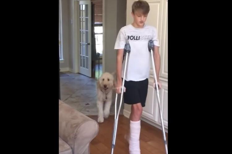 松葉杖で歩く少年について行くワンコ。飼い主に対する愛情が伝わってくる行動に感動!