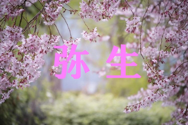 旧暦の3月を意味する「弥生(やよい)」、その不思議な名前には春の訪れを感じる由来があった!