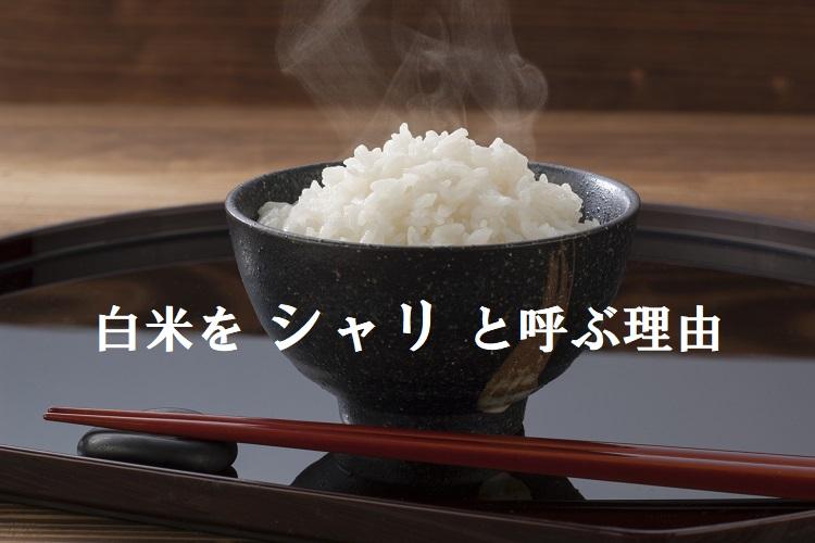お米をなぜ「シャリ」というの?呼び名の由来を調べてみた