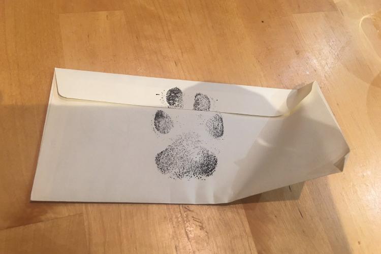 動物好き男子たち、近所のワンコと触れ合いたくて飼い主さんに手紙を書いたら・・・