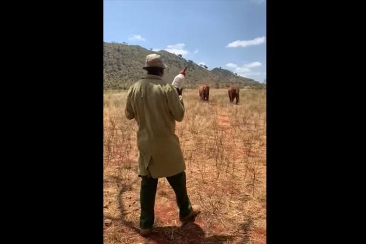 大きな容器を手に持った男性に向かってくるゾウたち・・・その後の展開にめちゃめちゃ癒される!