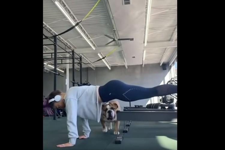 トレーニング中だっておかまいなしだワン!飼い主に密着するワンコが画的にも凄いことに(笑)