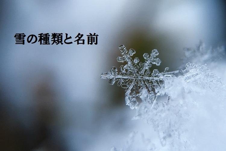 降る時期や質感で名前が変わる「雪」、それぞれの名前や雪の別名について解説します!