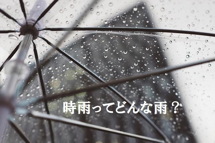 「時雨」ってどんな雨?どのような意味がある名前なの?