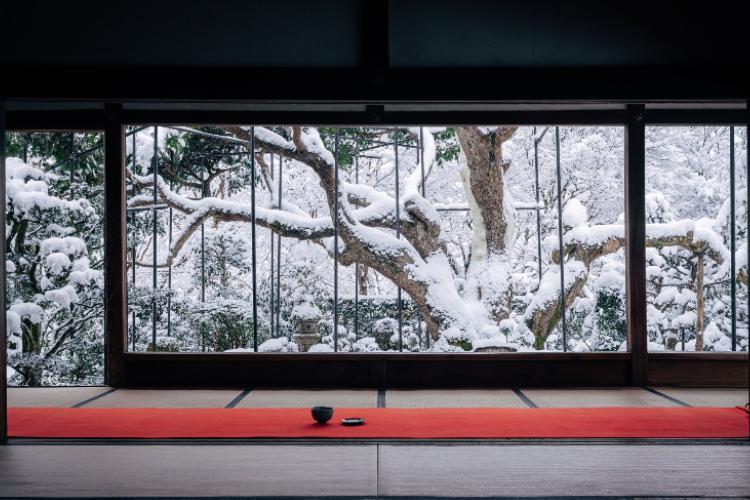 【絶景】部屋越しに広がる銀世界!京都宝泉院の雪景色がめちゃくちゃ美しい