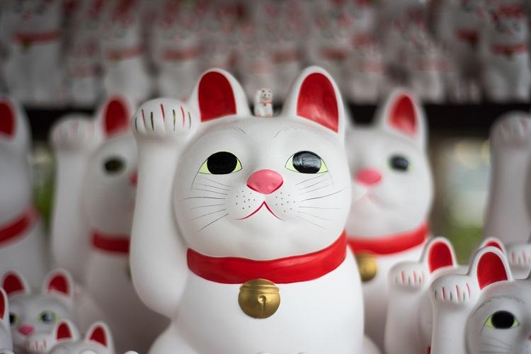招き猫の右手と左手、それぞれのご利益は?さらに色でもご利益が変わるらしい!