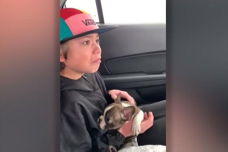 父親の死から5日後、子犬を手渡されて涙を浮かべる息子の理由に胸を打たれる