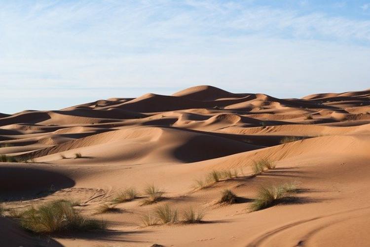 世界最大の砂漠はサハラ砂漠ではないってホント!?世界最大の砂漠はどこでしょう?