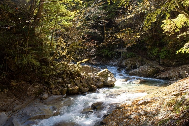 観光や登山にどうぞ!素晴らしい景観の「日本三大渓谷」をご紹介!