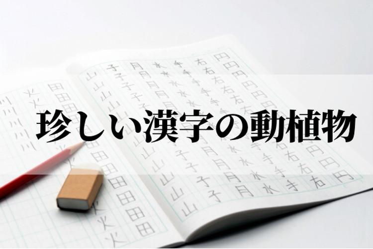 読めたらすごい!珍しい漢字表記をする難読な動植物!