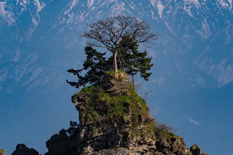 鳥肌が立った!「富山の本気」を撮った一枚がダイナミックでめちゃくちゃ美しい