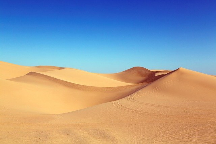 日本一の砂丘は鳥取ではないって本当!?日本三大砂丘をご紹介