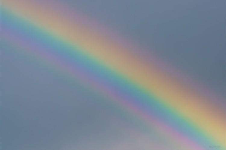 雨上がりの空にカラーパレット。七色以上の『過剰虹』が幻想的だと話題に!