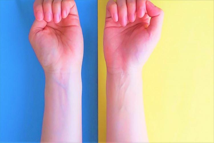 赤い血が流れる血管は、なぜ肌の上からだと青く見えるの?