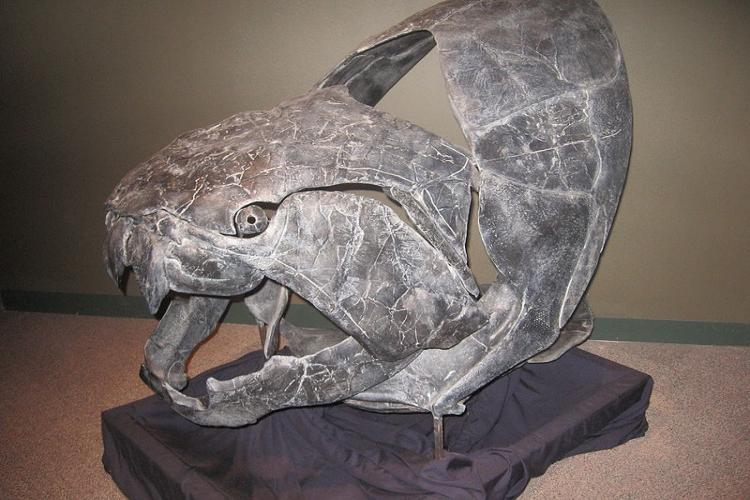 古代の装甲巨大魚「ダンクルオステウス」を調べてみたら、めっちゃカッコイイことが分かった