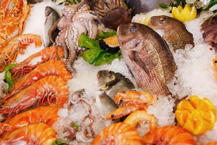 「魚介類」と「魚貝類」はどちらが正しい?違いはあるのか?