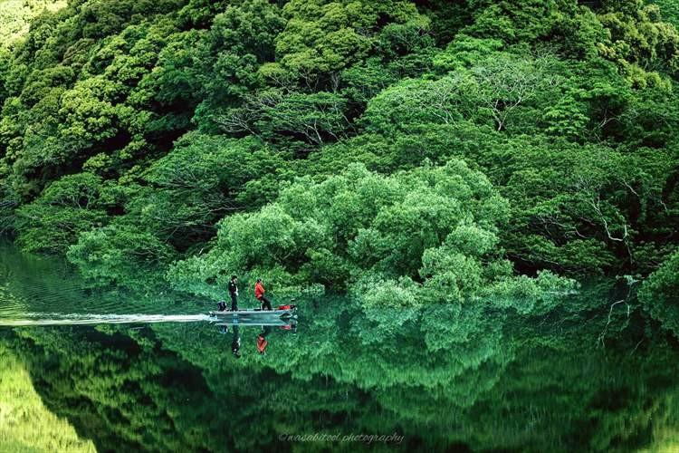 水面が一瞬わからなかった・・・偶然見つけた新緑の水鏡が幻想的