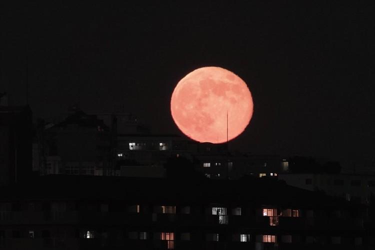 恋を叶えてくれる満月「ストロベリームーン」は見逃せない!今年の見頃は6月6日