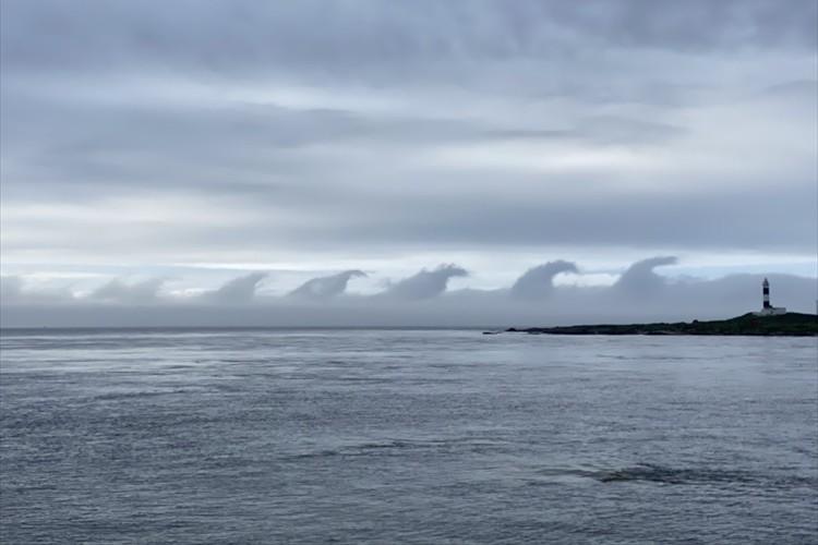 まぐろのヒレにも見える!?青森県大間町で発見された不思議な雲が話題に