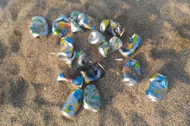 夏になると一番困るのがこれ。ゴミをわざわざ砂に埋めていく行動に呆れる声