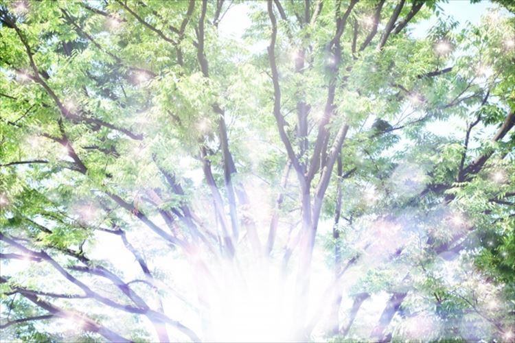権化の意味とは?元々仏教用語?アバターと関係があるってどうゆう事?