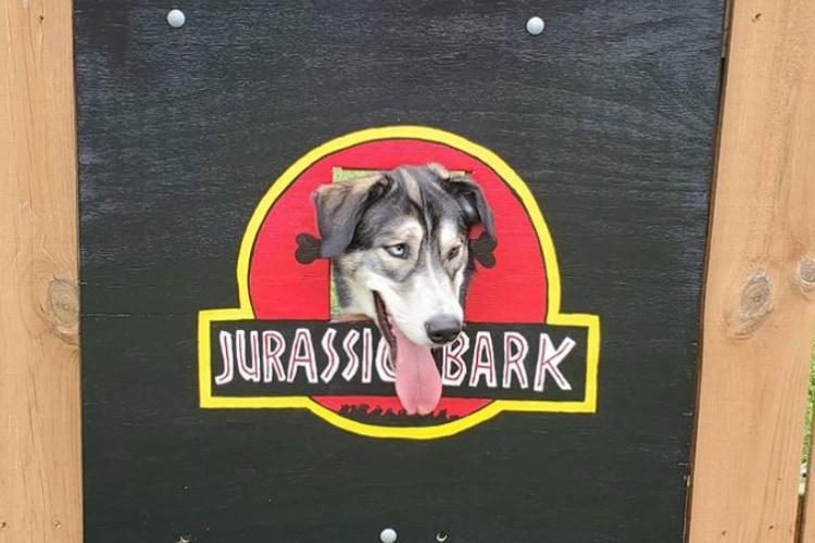 フェンスの穴に設置されたワンコ用の顔出しパネルがユーモアたっぷりで面白い!