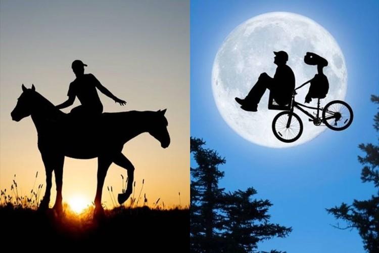 なんて不思議な世界観・・・段ボールと夕日だけで創る影絵が素晴らしいと話題に!