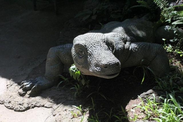 世界最大のトカゲ「コモドオオトカゲ」は世界でも珍しい毒トカゲ!