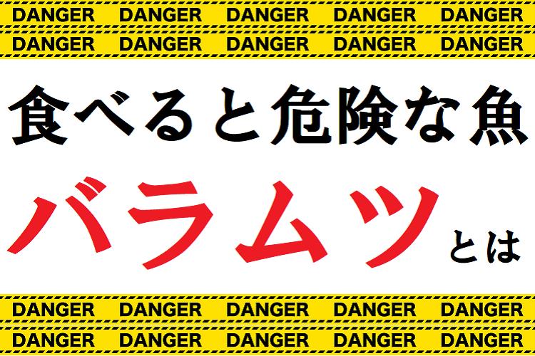 【危険な魚】バラムツはおいしいけど、その油でデンジャーなことになってしまうらしい・・・
