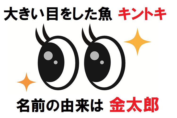 赤い体に大きい目をした「キントキ」、その名前は昔話の「金太郎」から?!