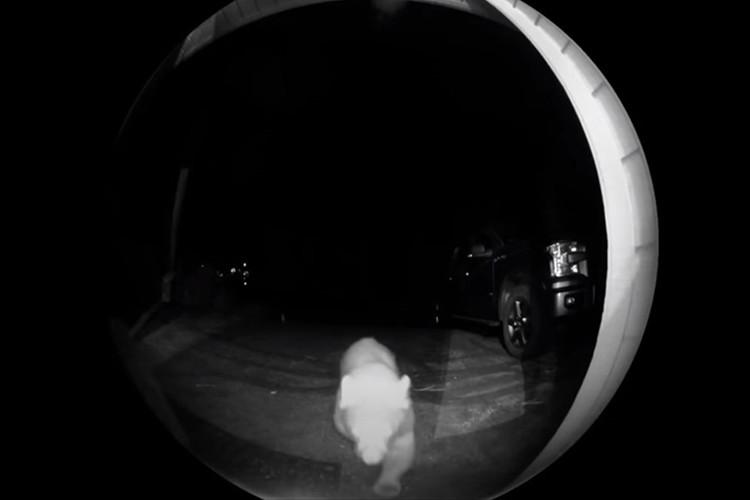 夜遅くにインターホンが?玄関のカメラを確認すると・・・トンデモナイ来客が!
