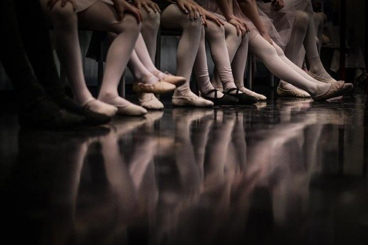 足のたくさん生えている「ムカデ」と「ヤスデ」は同じ生き物?違いはある?