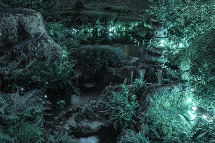 まるでジブリの世界に迷い込んだよう・・・島根・由志園で撮影された写真が幻想的!