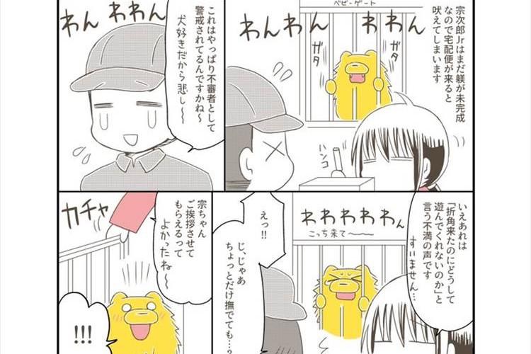 どっちも可愛い(笑) 人が大好きなポメラニアンVS宅配便のお兄さんを描いた漫画が話題に!
