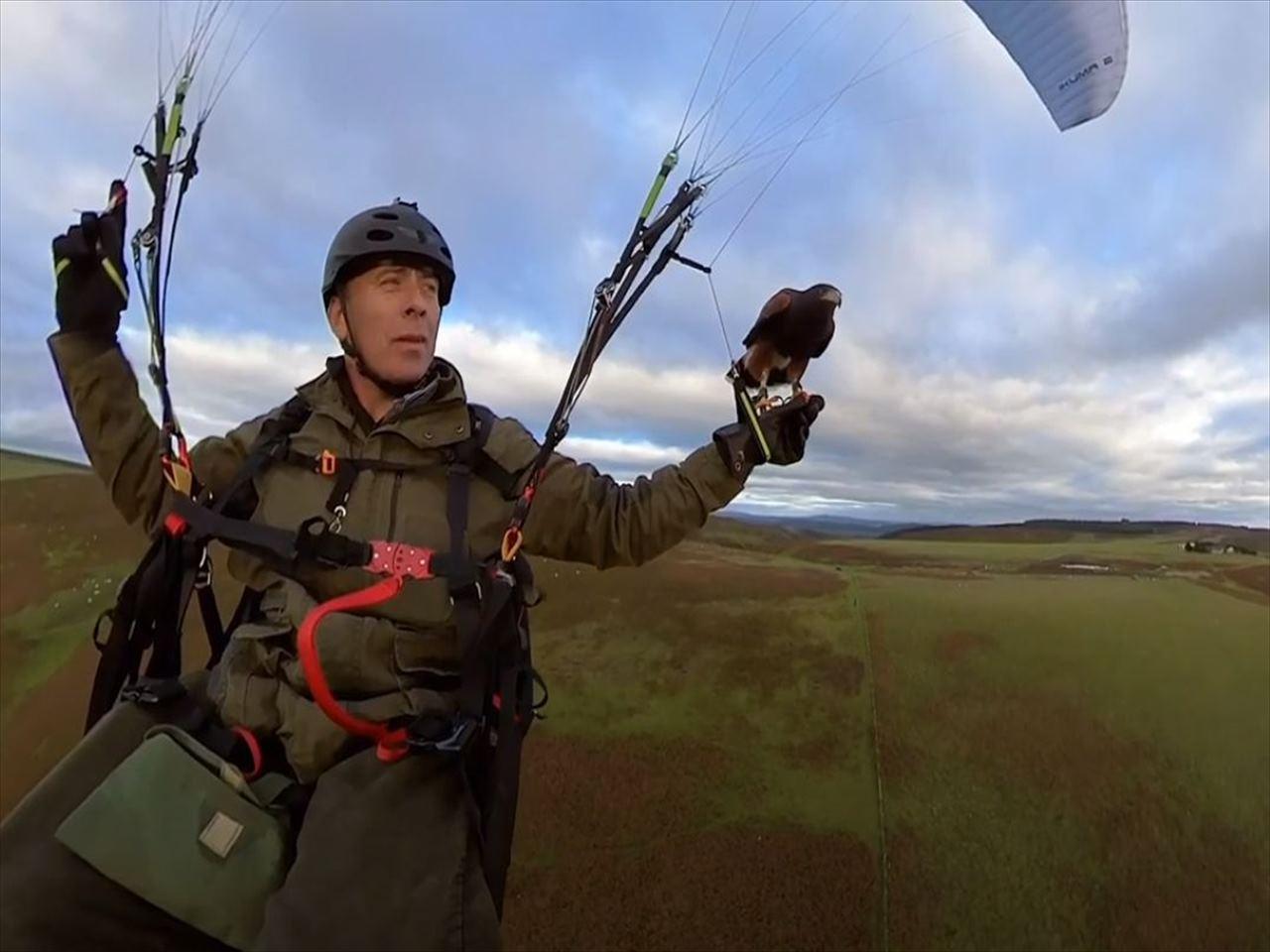 500フィート上空でパラグライダーに乗りながらタカと遊ぶ驚きの光景が話題に!