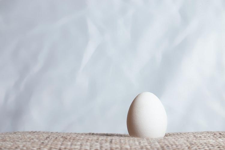「コロンブスの卵」はどのような経緯から生まれた言葉なの?冒険家のコロンブスとの関係は?