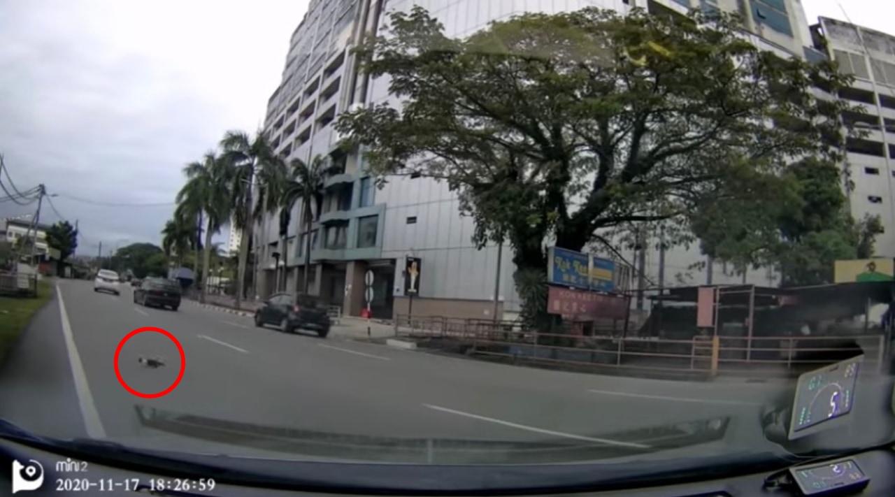【動画】道路に猫が!停車し助けようとした隙にボンネットの中に!?通行人のおかげで無事救出に成功