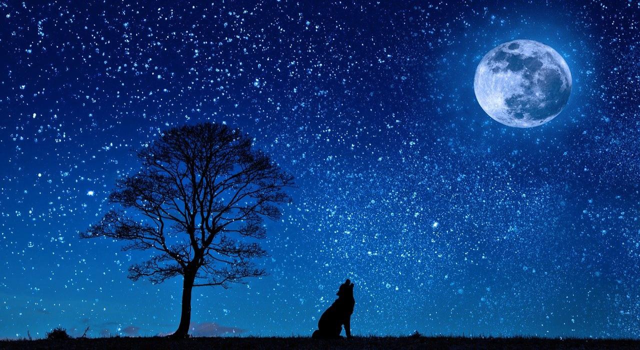 本日未明の「未明」って何時のこと?「夜半」や「深夜」が指す時間帯も解説!