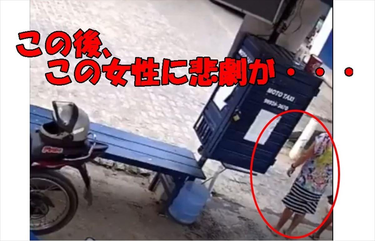 これは恥ずかしい。突然ワンコが飛びつき女性のスカートが・・・