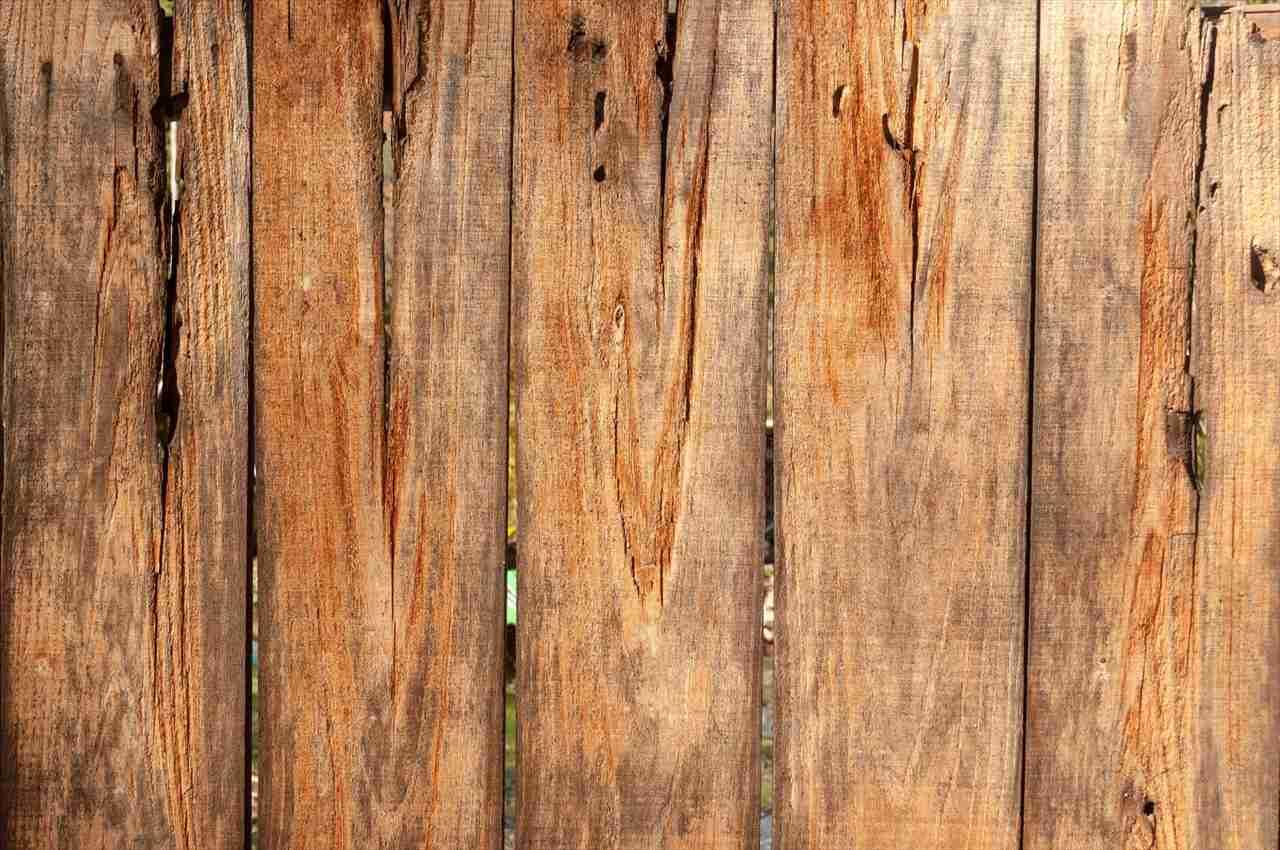 今すぐ清掃を止めるべきだ!木製の塀を清掃中、多くの人々がそう言った理由に納得した(笑)