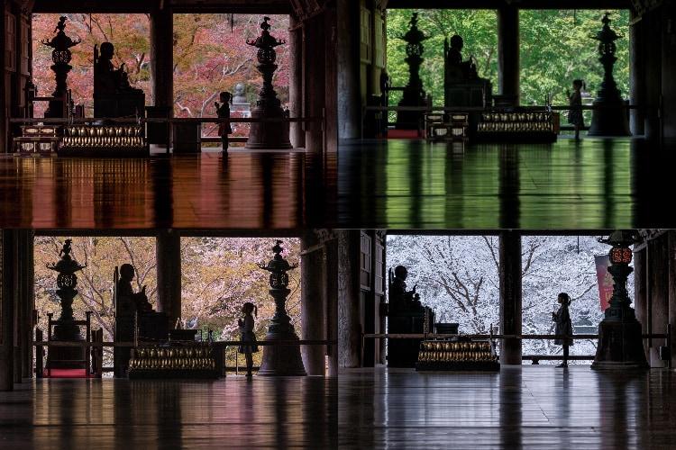父親が5年かけて撮った寺の春夏秋冬と娘の写真が素敵と話題!「感動しました」「美しい光景」