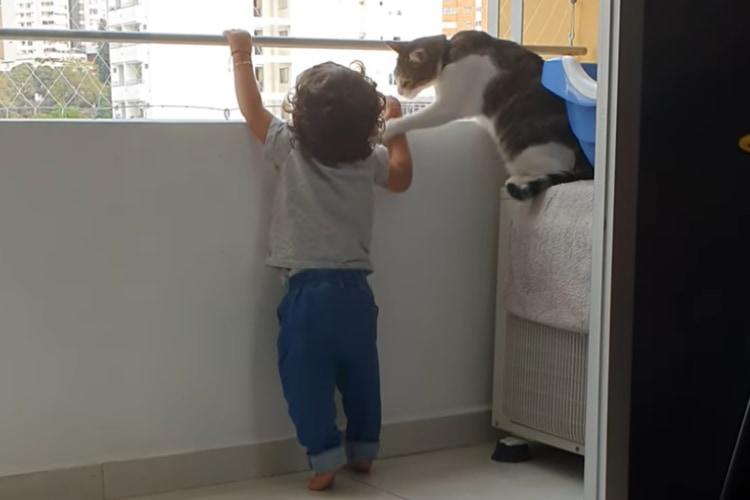 「僕が弟を守るニャ!」バルコニーの手すりに掴まろうとする赤ちゃんを全力で制止するニャンコ!