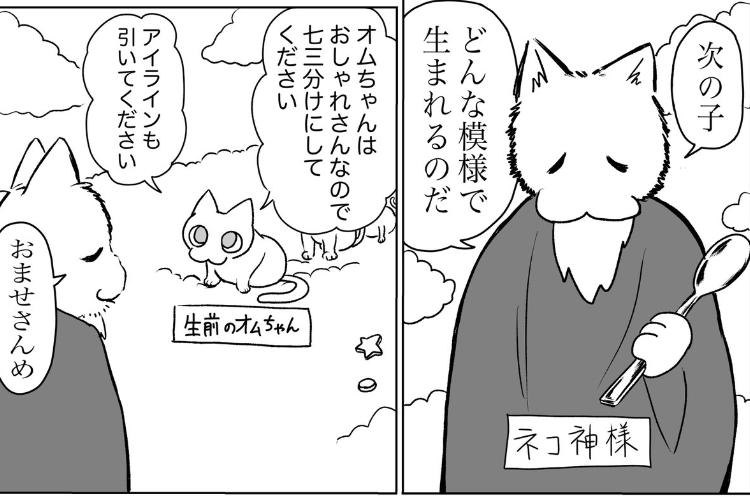 ネコ神様「どんな模様で生まれるのだ?」飼い主が愛猫の模様について妄想する漫画に癒される
