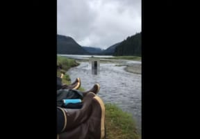 【恐怖映像】早く逃げてー!川辺で寝っ転がっていたら巨大で恐ろしい何かが迫ってきた!